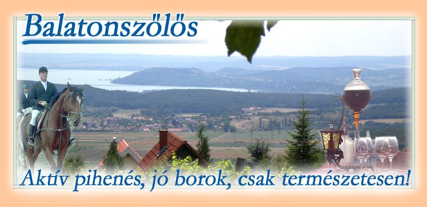 Magyar nyelvű oldal